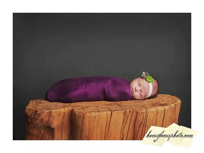 Hocus+focus+lawrence+newborn+photographer+quinlynn 06